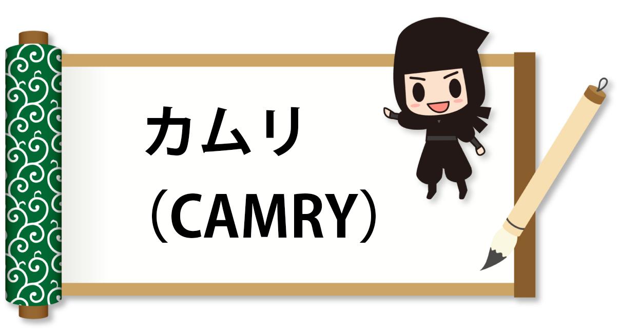 カムリの自動車保険料