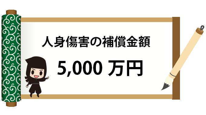 人身傷害5000万円